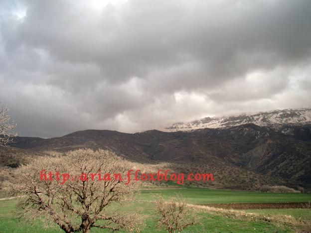 شهر ریجاب در بخش مرکزی شهرستان دالاهو ...